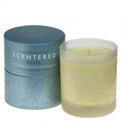 Scentered EscapeAromatherapy Home Candle